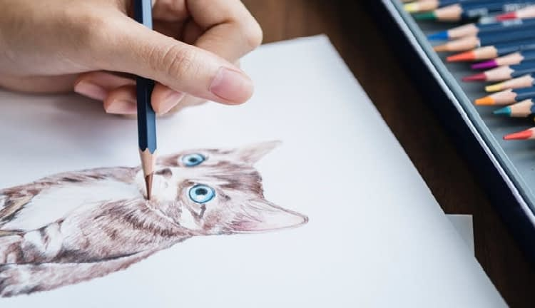drawing a cat on a sketchpad